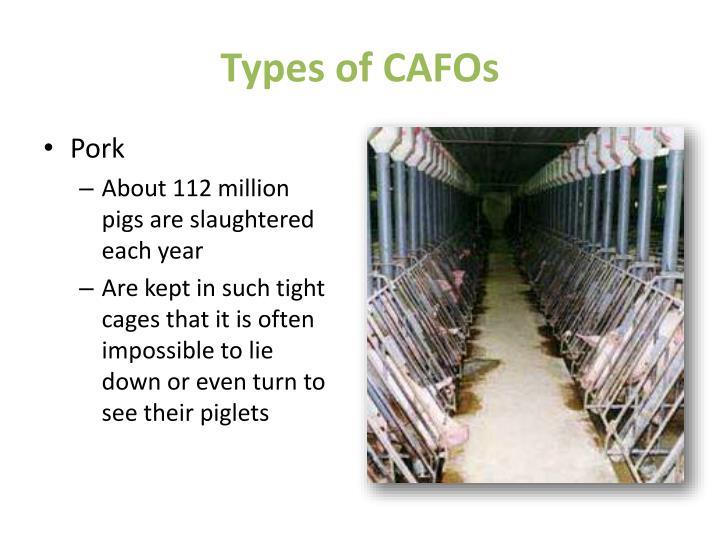Types of CAFOs