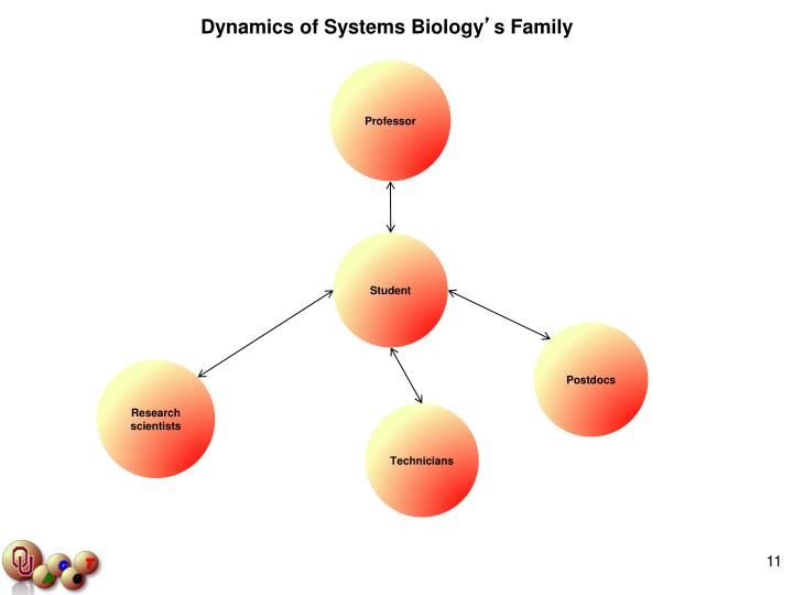 Dynamics of Systems Biology