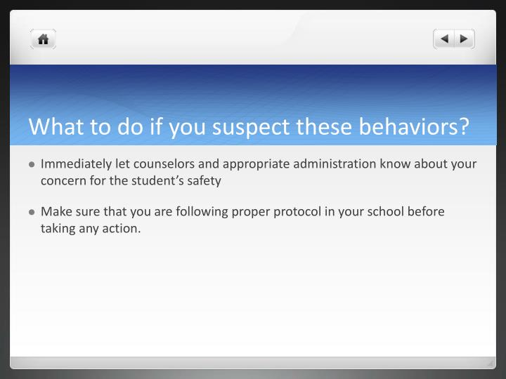 What to do if you suspect these behaviors?