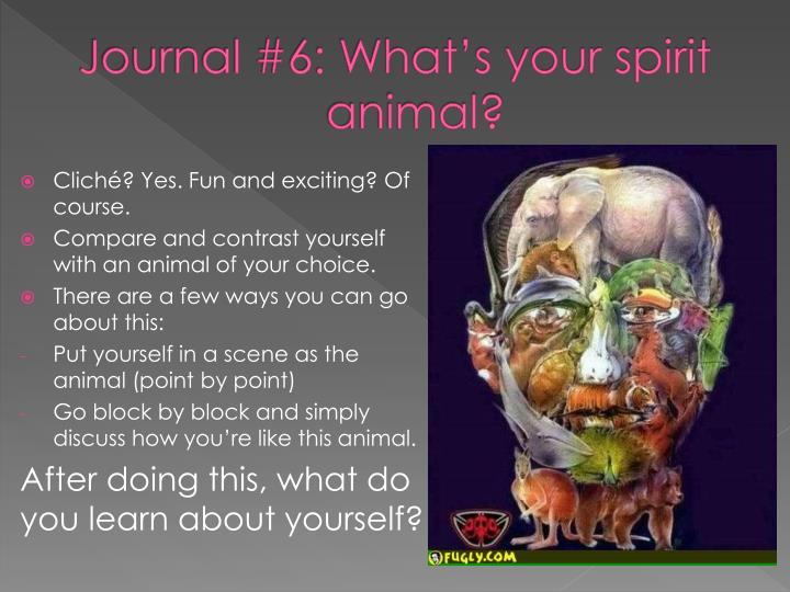 Journal #6: What's your spirit animal?
