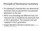 principle of dominance summary