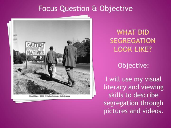 Focus Question & Objective