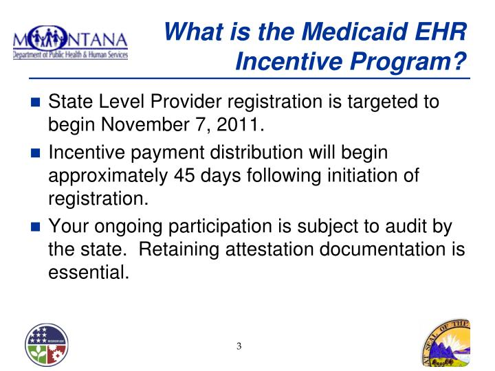 What is the Medicaid EHR Incentive Program?
