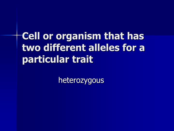 Cell or organism that has two different alleles for a particular trait