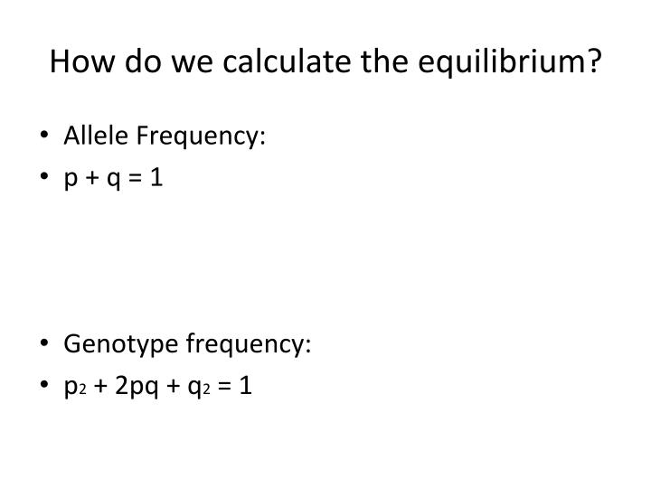 How do we calculate the equilibrium?