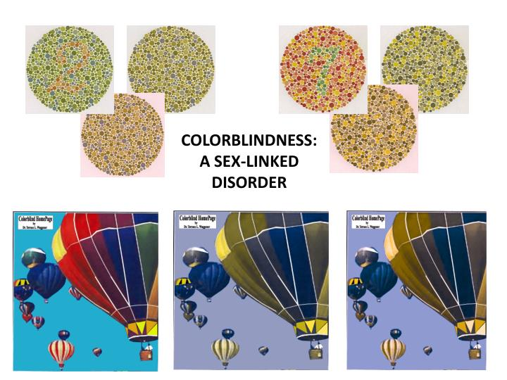 COLORBLINDNESS: