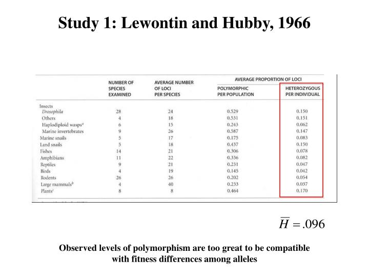 Study 1: Lewontin and Hubby, 1966