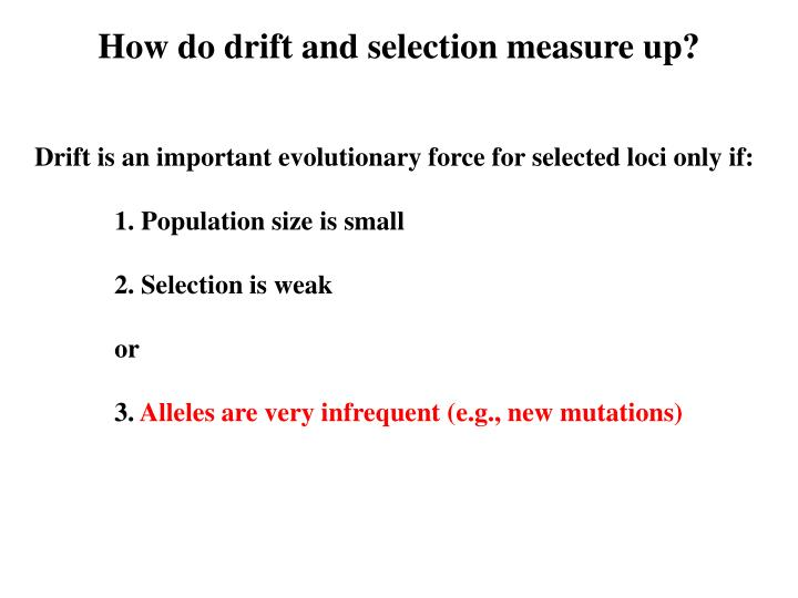 How do drift and selection measure up?