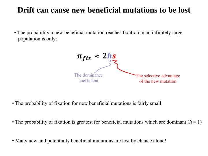 Drift can cause new beneficial mutations to be