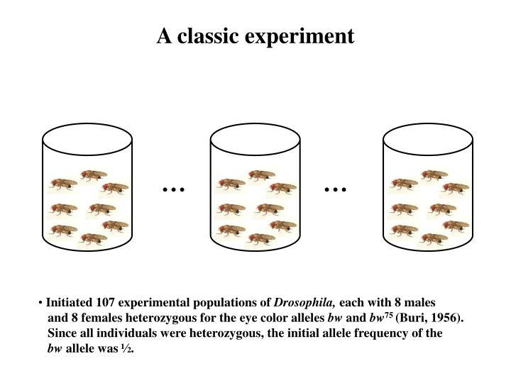 A classic experiment