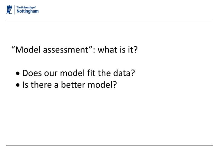 """""""Model assessment"""": what is it?"""