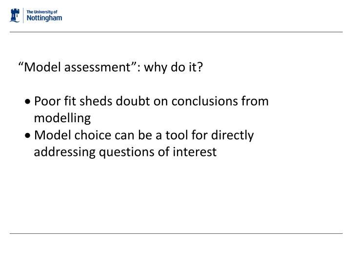 """Model assessment"": why do it?"
