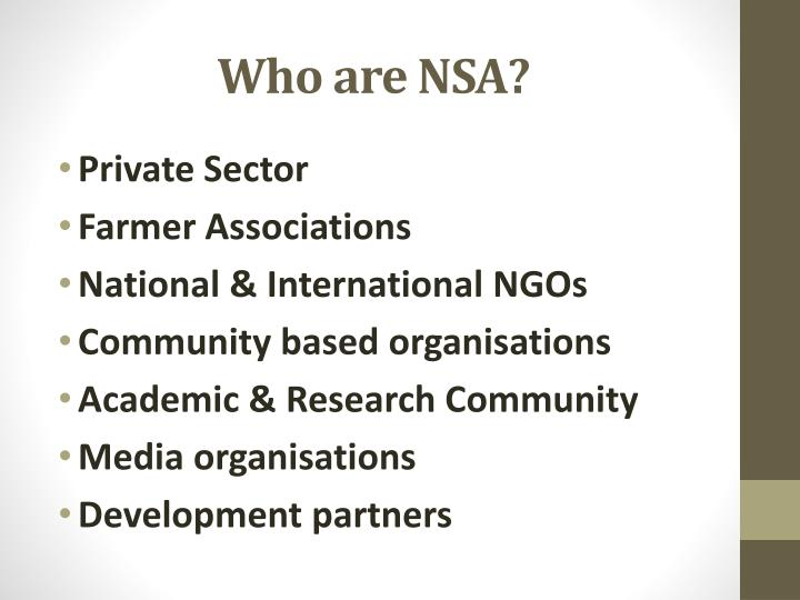 Who are NSA?
