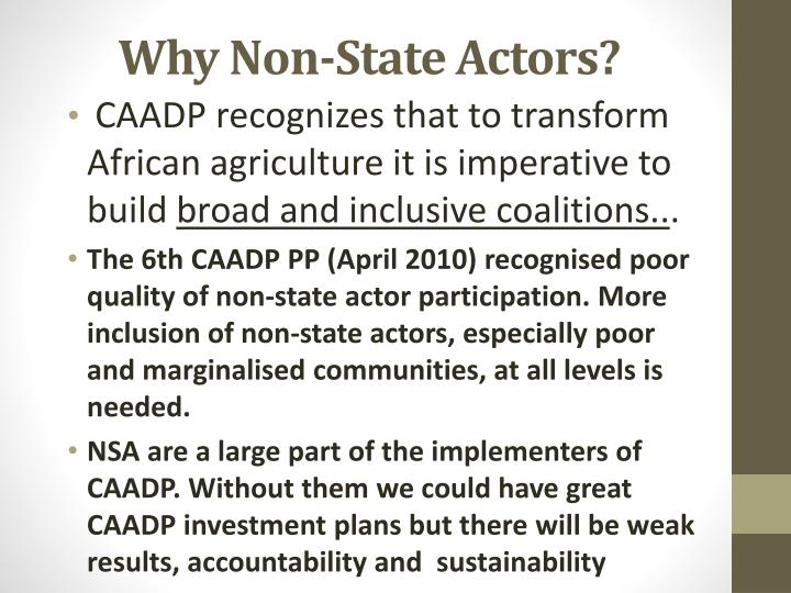 Why Non-State Actors?