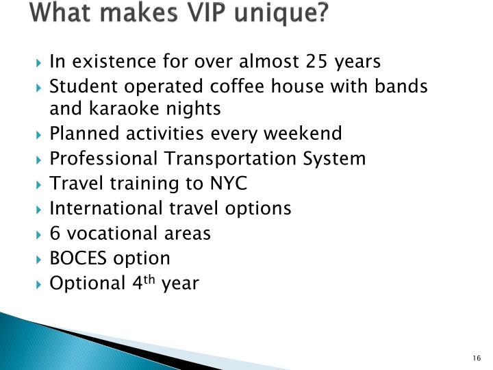 What makes VIP unique?