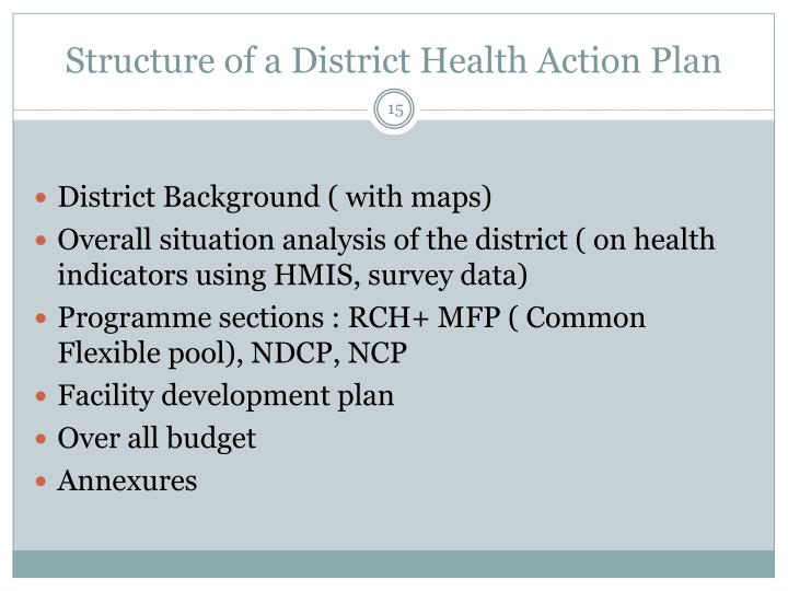 Structure of a District Health Action Plan