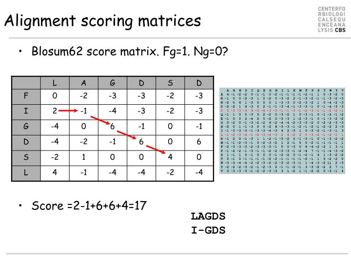Alignment scoring matrices