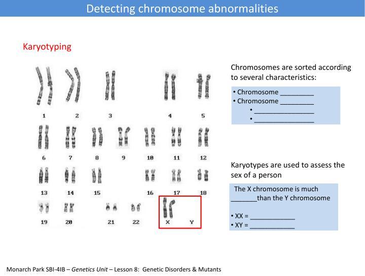 Detecting chromosome abnormalities