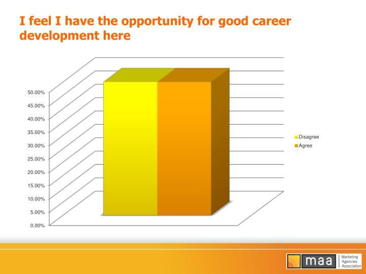 I feel I have the opportunity for good career development here