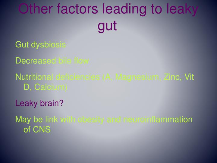 Other factors leading to leaky gut