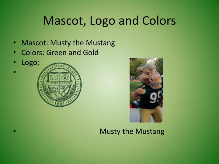 Mascot, Logo and Colors