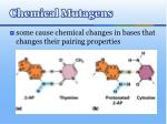 chemical mutagens1