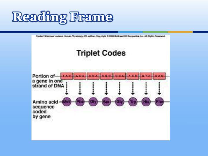 Reading Frame