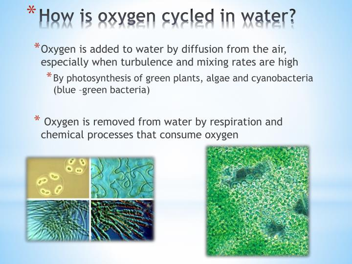 Oxygen is added to water by diffusion from the air, especially when turbulence and mixing rates are high