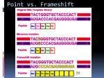 point vs frameshift