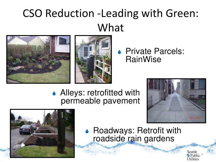 CSO Reduction -Leading with Green: What