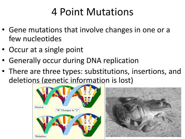 4 Point Mutations
