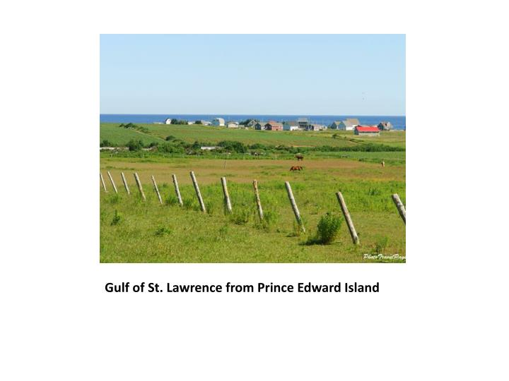 Gulf of St. Lawrence from Prince Edward Island