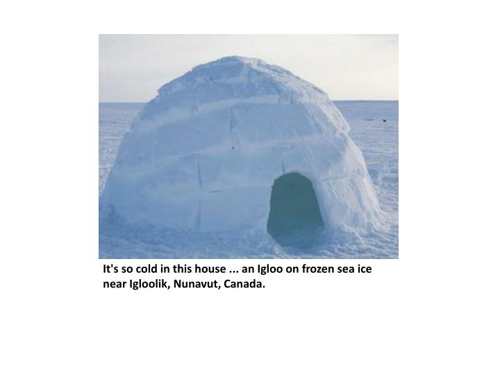 It's so cold in this house ... an Igloo on frozen sea ice near