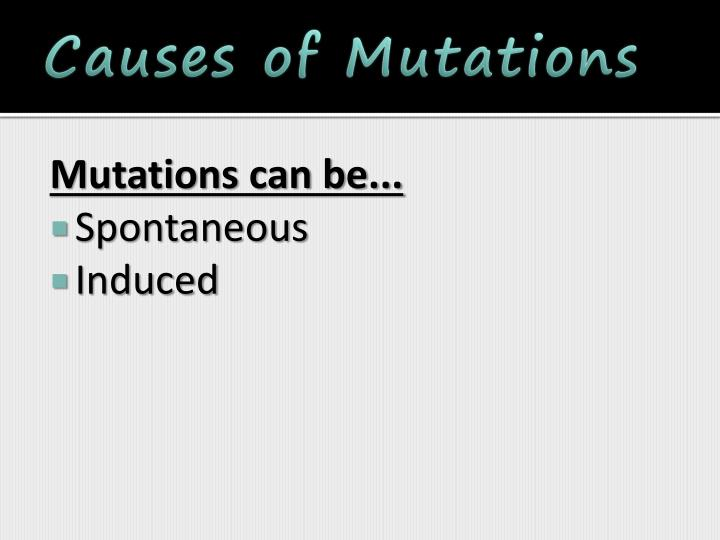 Causes of Mutations