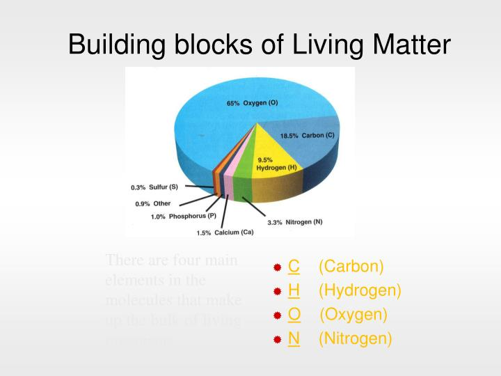 Building blocks of living matter