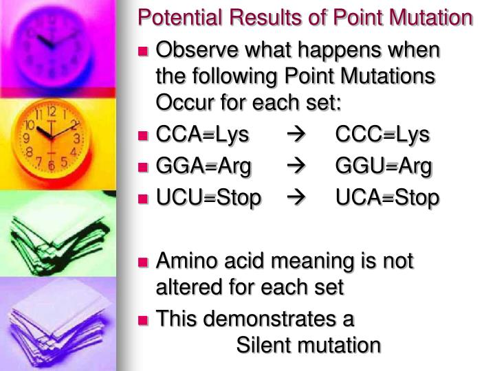 Potential Results of Point Mutation