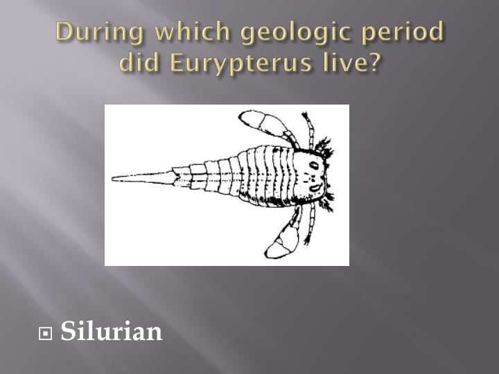 During which geologic period did