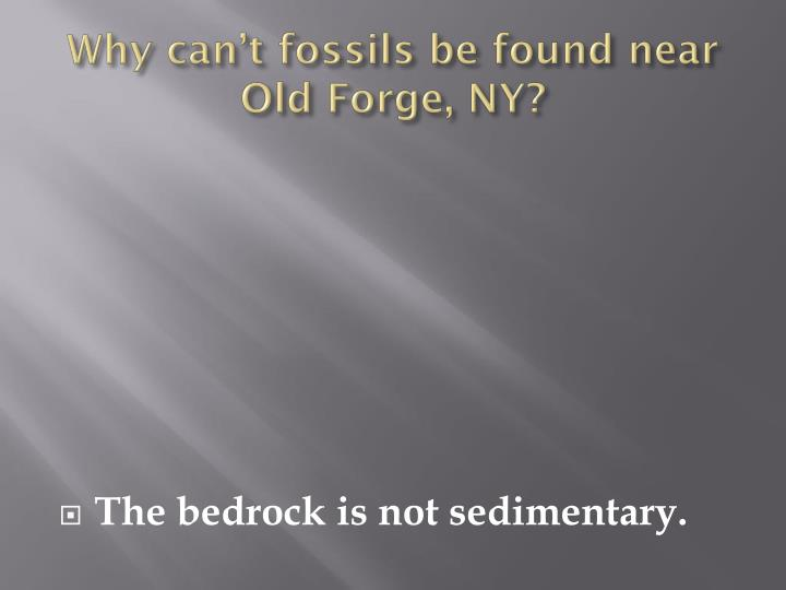 Why can't fossils be found near Old Forge, NY?