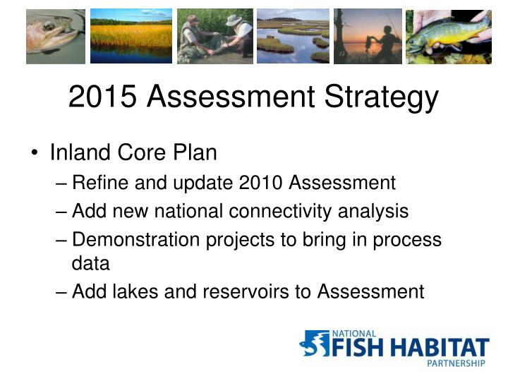 2015 Assessment Strategy