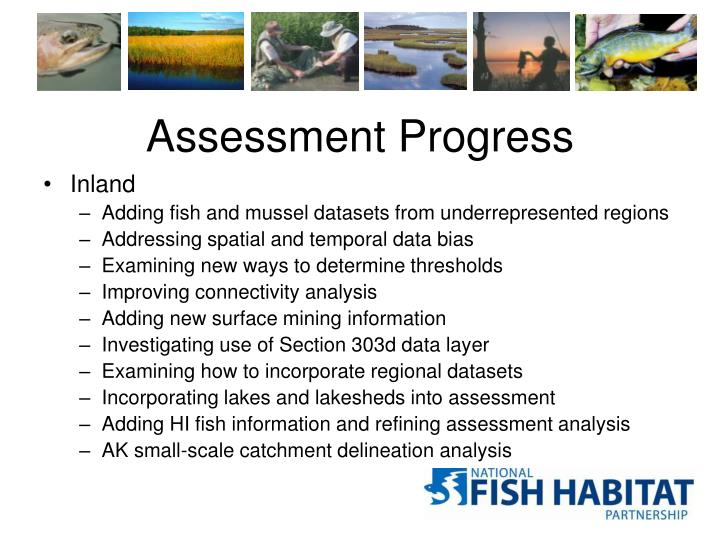 Assessment Progress
