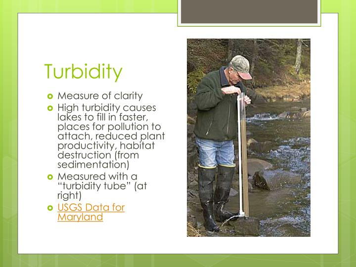 Turbidity