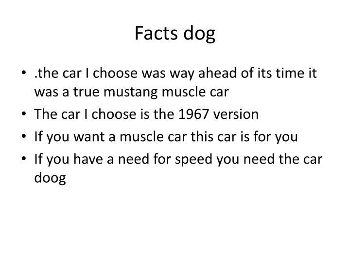 Facts dog