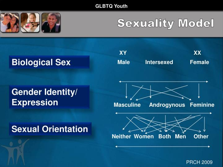 Sexuality Model