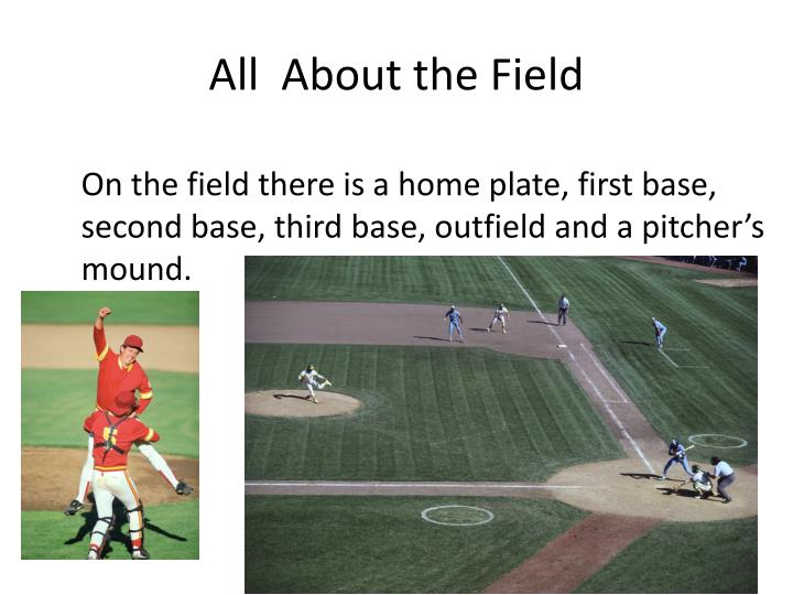 All  About the Field