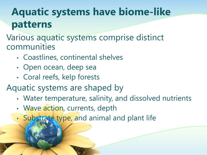 Aquatic systems have biome-like patterns