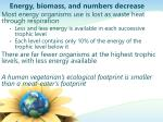 energy biomass and numbers decrease