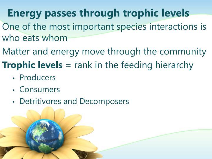 Energy passes through