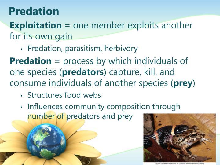 Predation