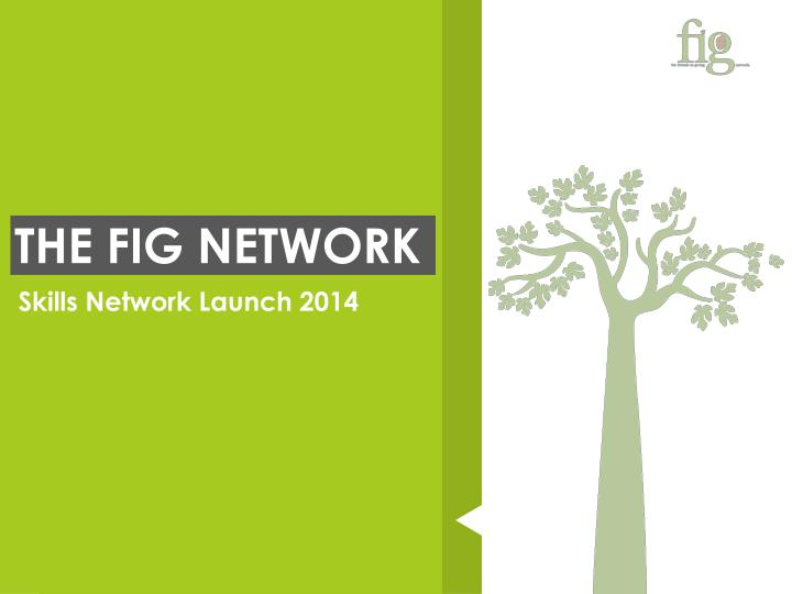 THE FIG NETWORK