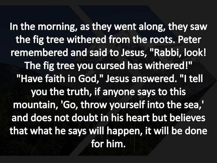 """In the morning, as they went along, they saw the fig tree withered from the roots. Peter remembered and said to Jesus, """"Rabbi, look! The fig tree you cursed has withered!"""""""